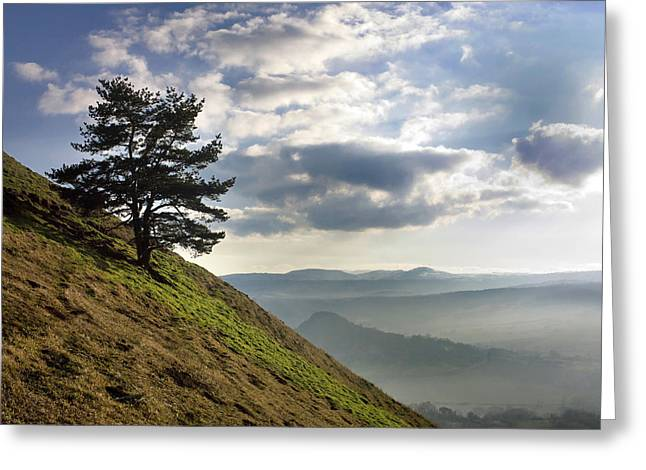 Tree And Misty Landscape Greeting Card by Bernard Jaubert
