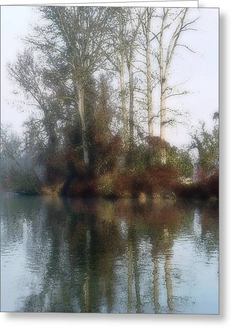 Tree And Reflection Greeting Card