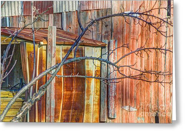 Tree And Rust Greeting Card by Jim Wright