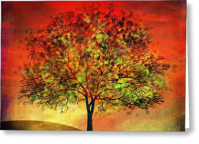 Tree At Sunset Greeting Card by Klara Acel