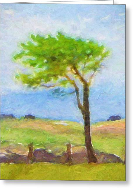 Tree At The Coast Greeting Card by Lutz Baar