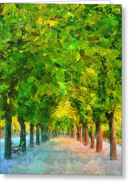 Tree Avenue In The Vienna Augarten Greeting Card