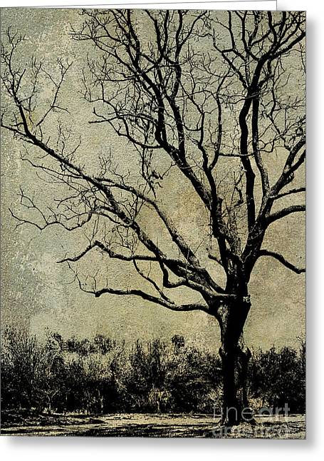Tree Before Spring Greeting Card