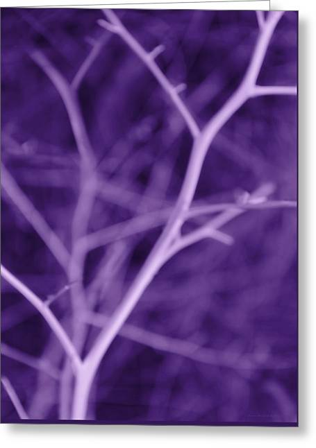 Tree Branches Abstract Purple Greeting Card by Jennie Marie Schell