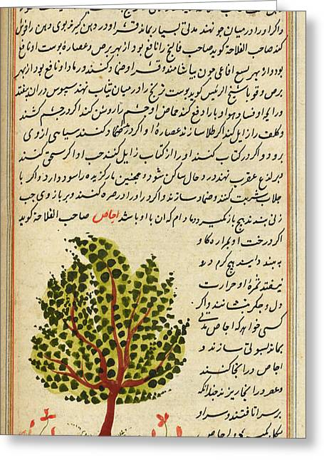 Tree Greeting Card by British Library