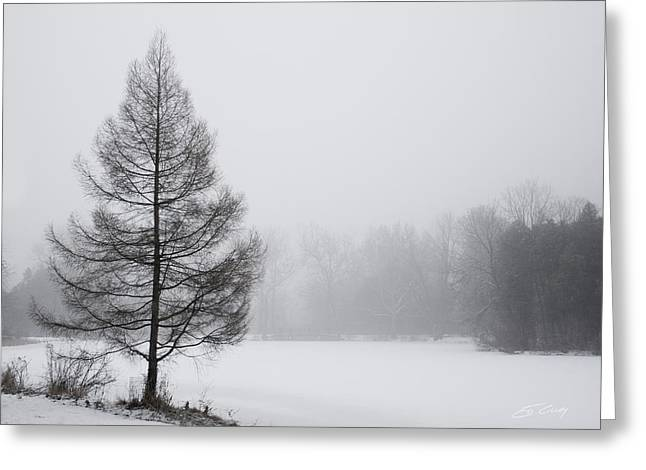 Tree By The Snowy Lake Greeting Card