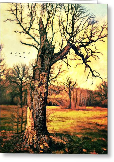 Tree Greeting Card by Gynt