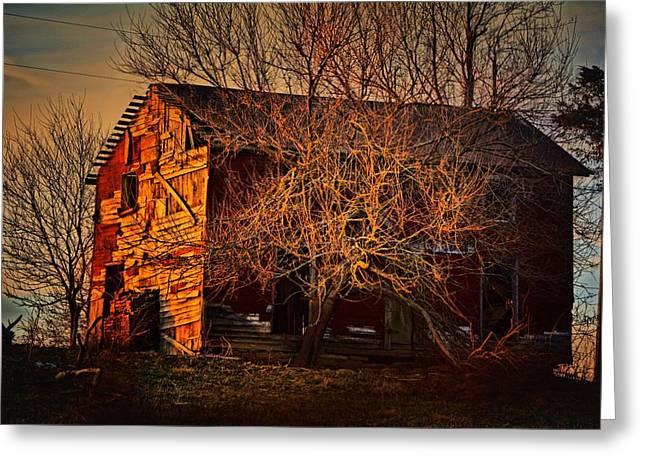 Tree House Greeting Card by Robert McCubbin