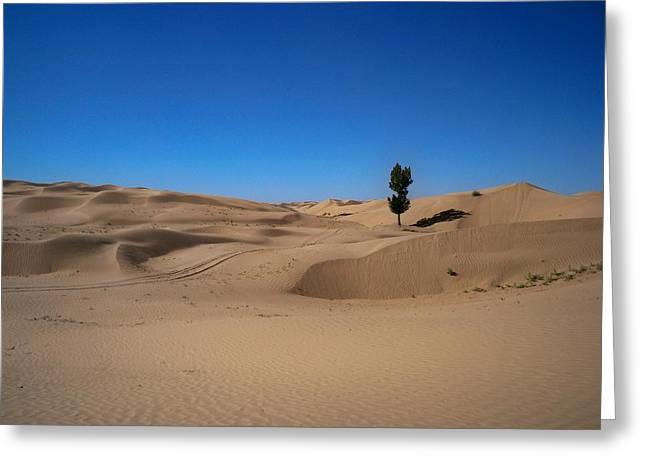 Tree In Desert Greeting Card