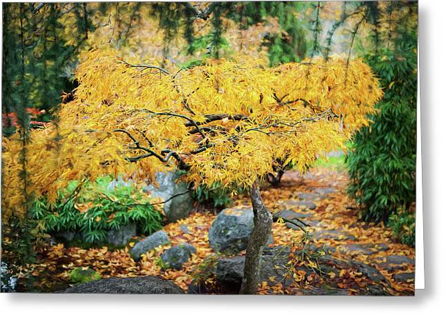 Tree In Full Autumn Glory, Oregon, Usa Greeting Card