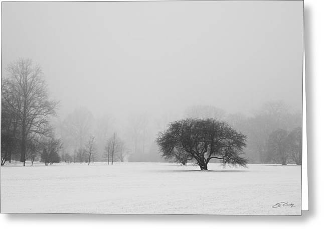 Greeting Card featuring the photograph Tree In The Fog by Ed Cilley