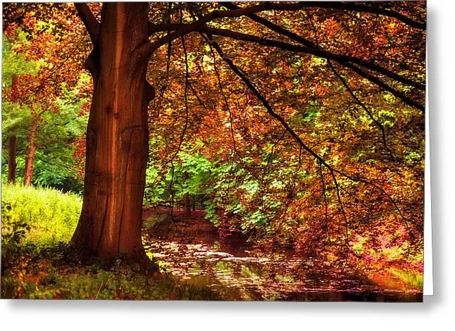 Tree In The Park. De Haar Castle. Utrecht  Greeting Card by Jenny Rainbow