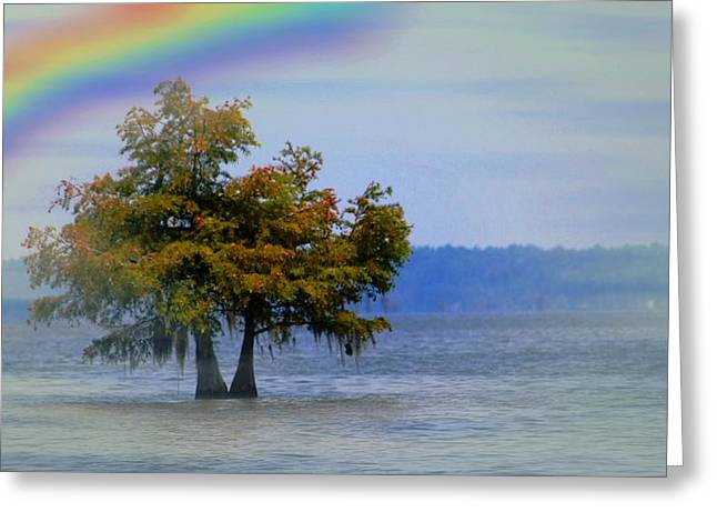 Tree In The Water Greeting Card