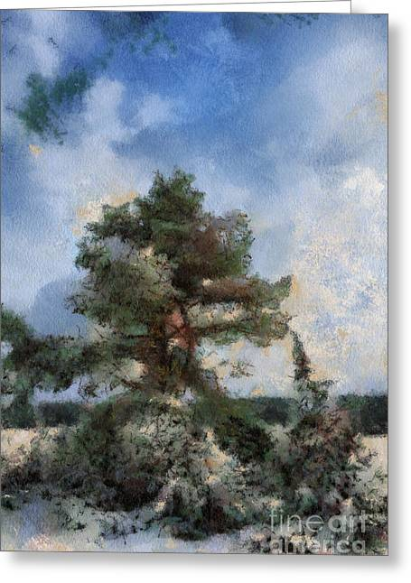 Tree In The Wintery Landscape Greeting Card