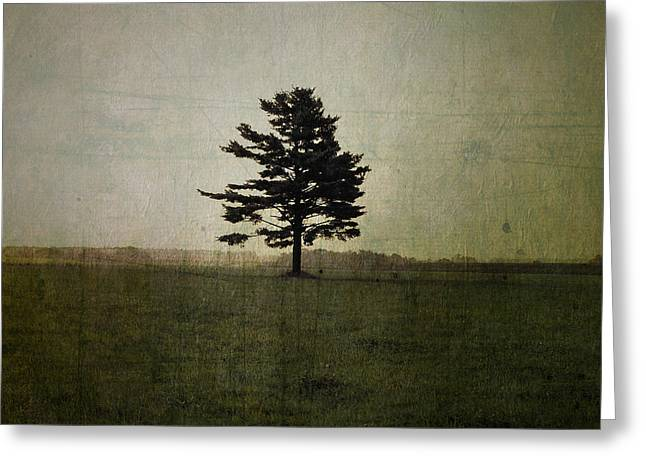 Tree Journey - 01at Greeting Card by Variance Collections