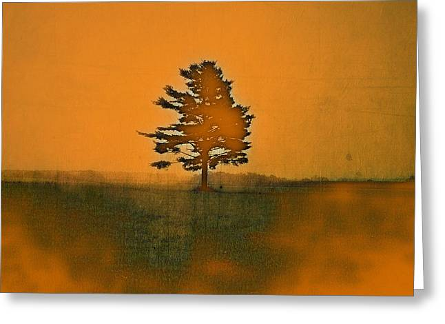 Tree Journey - Sp11b Greeting Card by Variance Collections