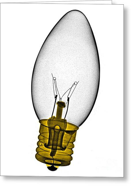 Tree Light Bulb X-ray Greeting Card by Bert Myers