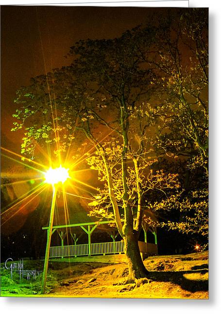 Tree Lights Greeting Card by Glenn Feron