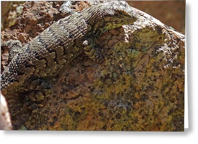 Tree Lizard Greeting Card