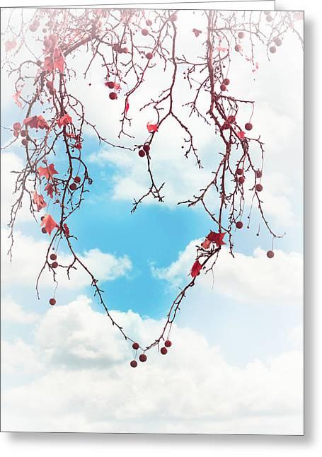 Tree Lover Greeting Card by Debi Bishop