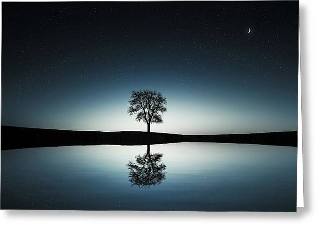 Tree Near Lake At Night Greeting Card by Bess Hamiti