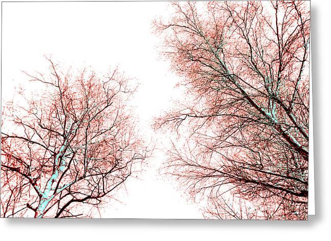 Tree Greeting Card by Nina Peterka