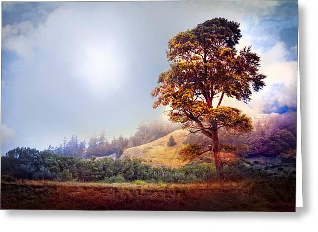 Tree Of Dreams Greeting Card by Debra and Dave Vanderlaan