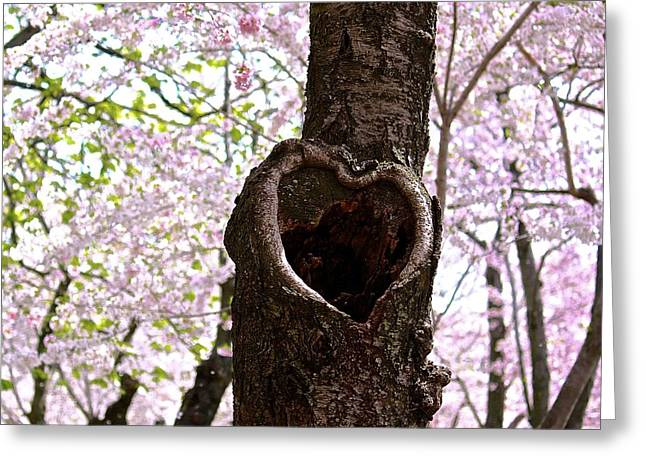 Tree Of Love Greeting Card
