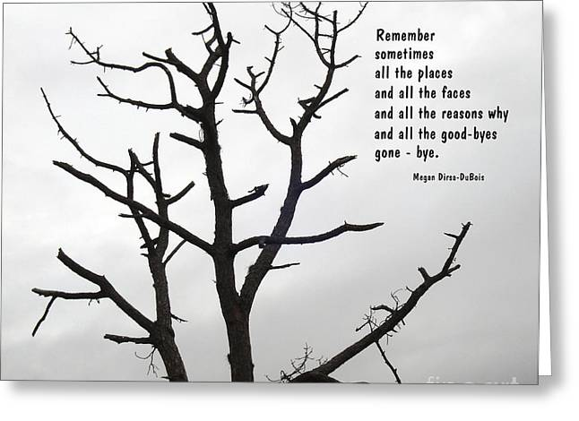 Tree Of Reverie Greeting Card