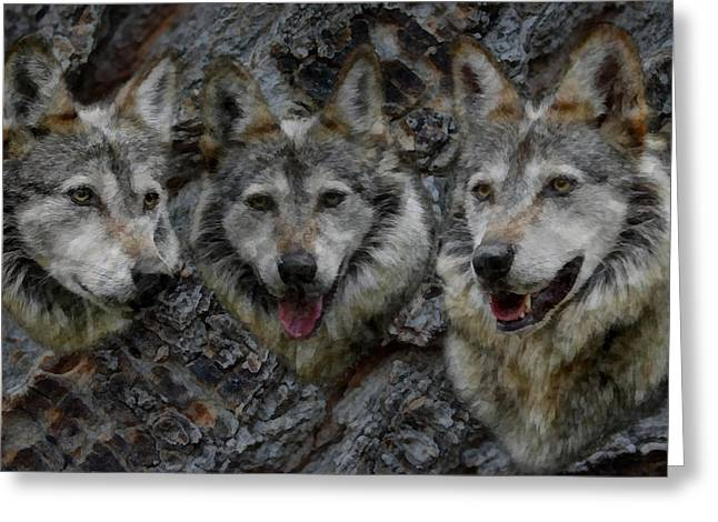 Tree Of Wolves Greeting Card by Ernie Echols