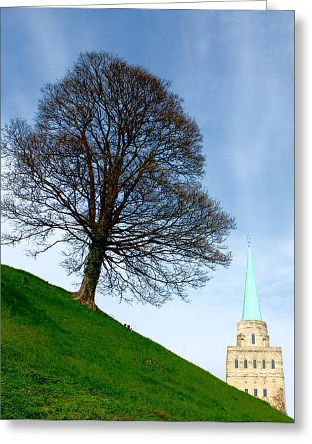 Greeting Card featuring the photograph Tree On A Hill by Jeremy Hayden