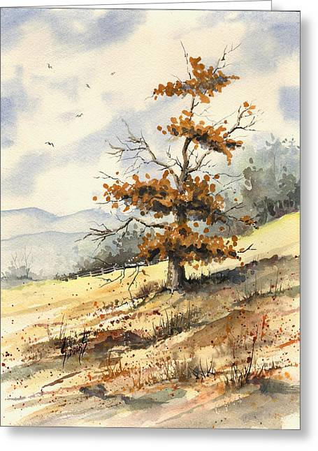 Tree On A Hillside Greeting Card by Sam Sidders
