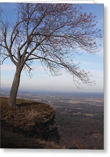Tree On A Mountain Edge Greeting Card