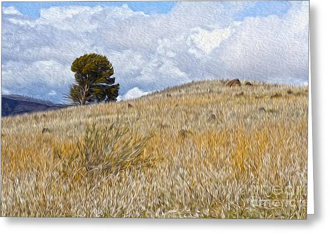Tree On The Hill Greeting Card by Nur Roy