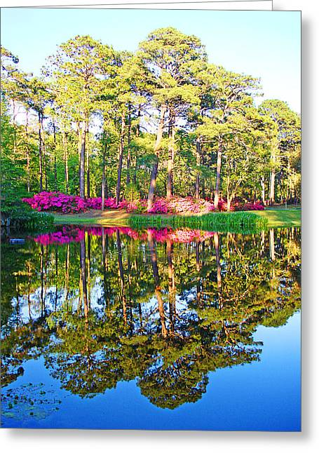 Tree Reflections And Pink Flowers By The Blue Water By Jan Marvin Studios Greeting Card
