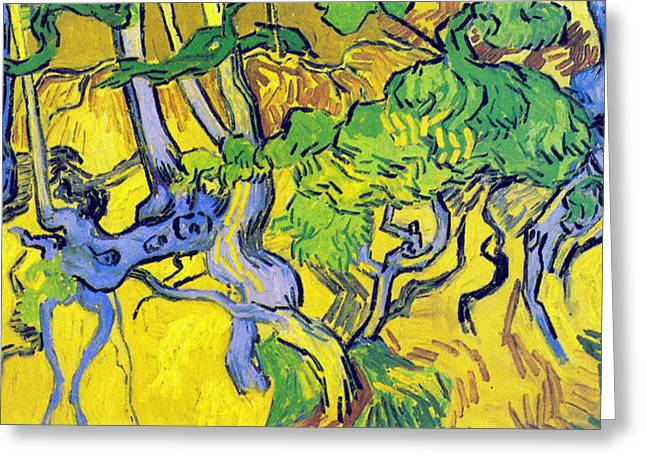 Tree Roots And Tree Trunks Greeting Card by Vincent Van Gogh