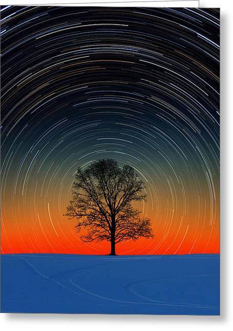 Greeting Card featuring the photograph Tree Silhouette With Star Trails by Larry Landolfi