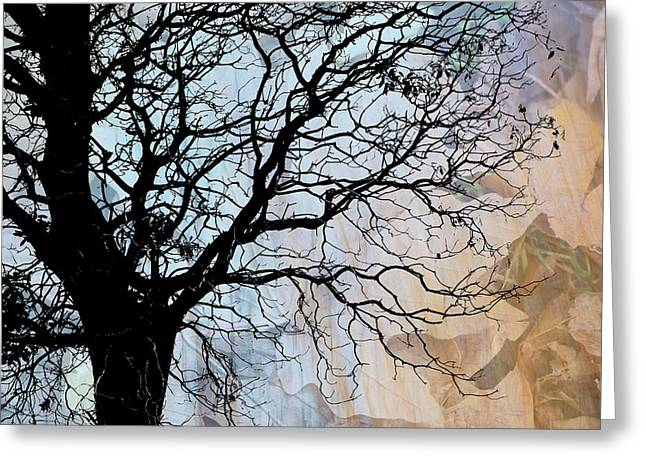 Tree Skeleton Layer Over Opaque Image Greeting Card by Judi Angel