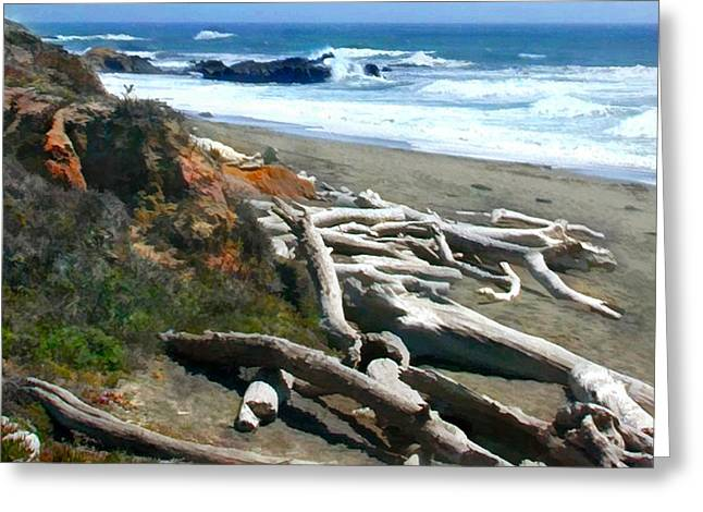 Tree Skeletons At Ocean's Edge Greeting Card by Elaine Plesser