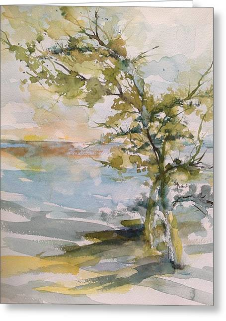Tree Study Greeting Card by Robin Miller-Bookhout