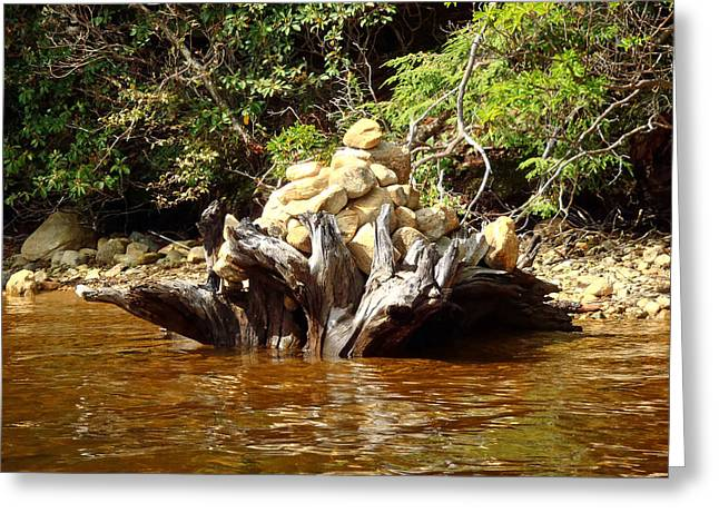 Tree Stump Filled With Rocks Greeting Card