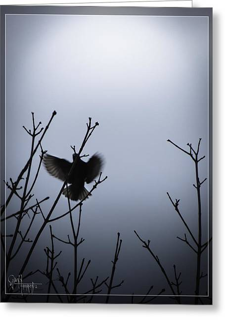 Tree Top Landing Greeting Card by Glenn Feron