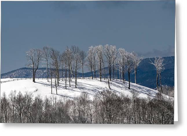 Tree Topper Hill Greeting Card by John Haldane