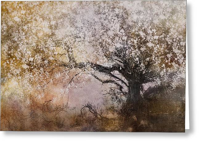 Tree Whispers Greeting Card by Amy Weiss