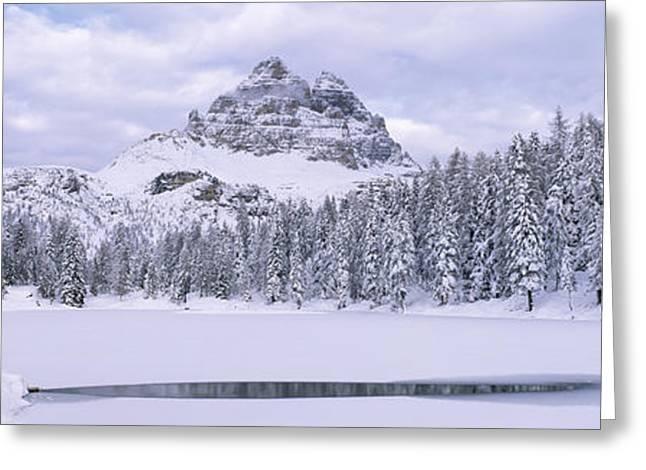 Trees Along A Frozen Lake, Lake Greeting Card