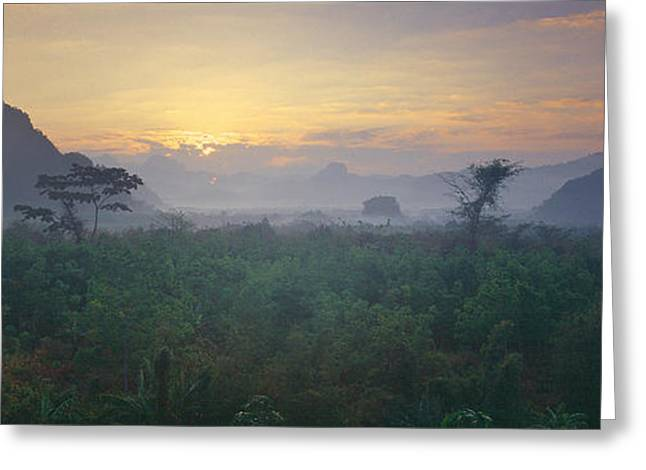 Trees In A Valley, Kao Sok National Greeting Card