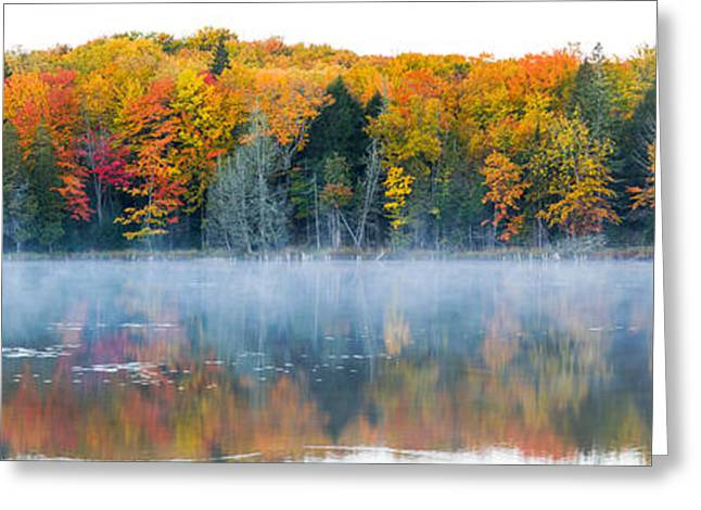 Trees In Autumn At Lake Hiawatha, Alger Greeting Card by Panoramic Images