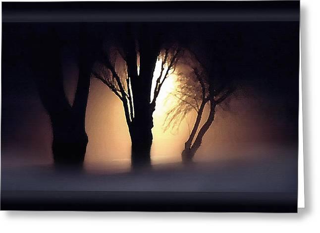 Trees In Midnight Fog Greeting Card by Steve Ohlsen
