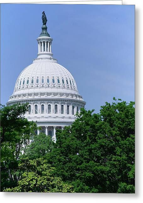 Trees In Spring And U.s. Capitol Dome Greeting Card