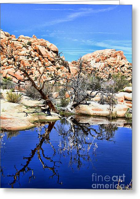 Trees In The Barker Dam Greeting Card